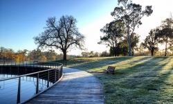 Lake Weeroona Frost